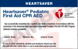 20-2855 IVE Heartsaver® Pediatric First Aid CPR AED eCard