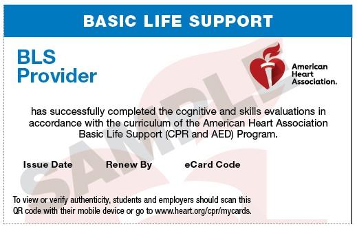 20-2800  IVE Basic Life Support (BLS) Provider eCard