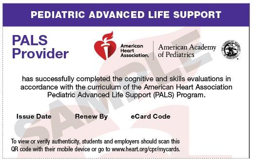20-2819 IVE Pediatric Advanced Life Support (PALS) Provider eCard
