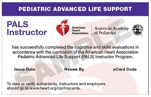20-2820 IVE Pediatric Advanced Life Support (PALS) Instructor eCard